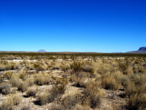 West Texas Land Near Loving County and Terlingua