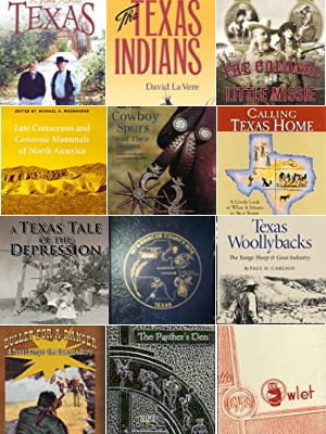 Books about Briscoe County Texas People and Places