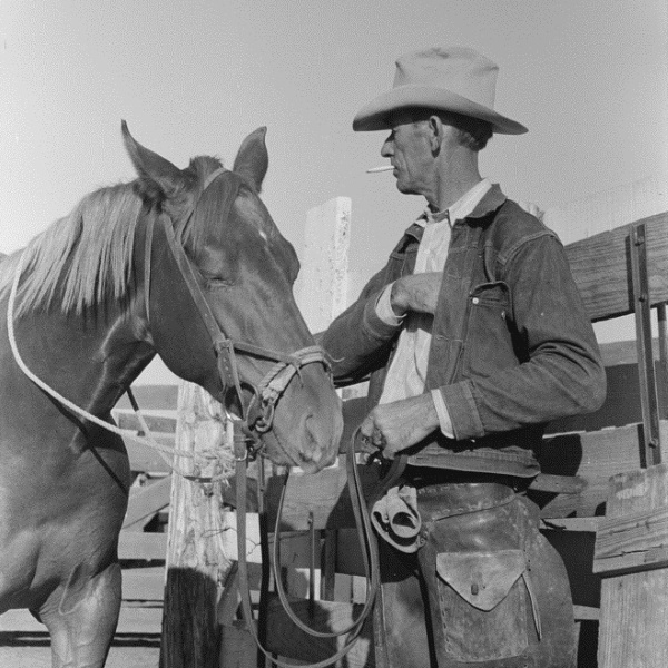 Cattleman with His Horse at 1939 San Angelo Auction