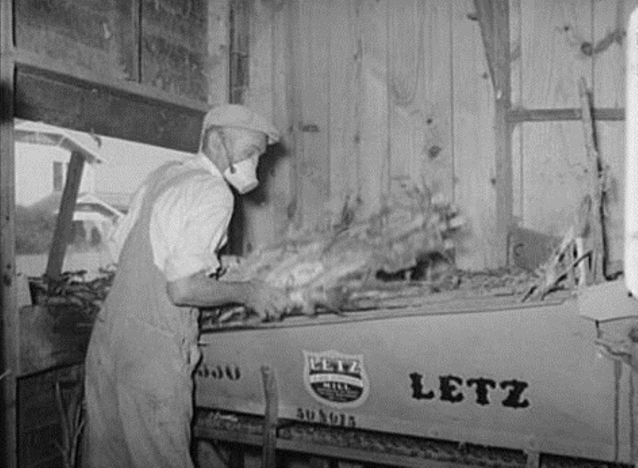 Feed Mill Worker in Taylor Texas in 1939