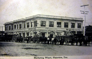 Marketing Wheat Plainview Tex 1910