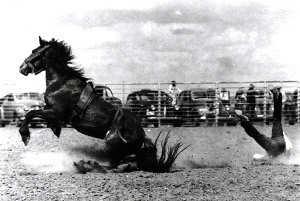 Cowboy Takes a Hard Fall in 1940