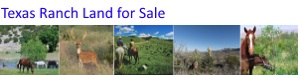Texas Ranch Land for Sale
